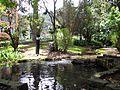 Río en el parque del Chicó Bogotá.JPG