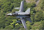 RAF Panavia Tornado GR4 Lofting-2.jpg