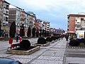 RO IS Pascani city center.jpeg