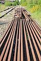 Rails abandonnés près de Mauron 02.JPG