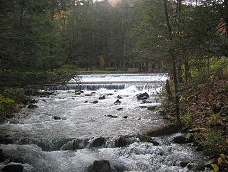 Ravensburg State Park - Rauchtown Run in Ravensburg State Park