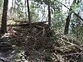 Raymondskill Falls - Pennsylvania (5678044294).jpg