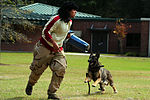 Red Ribbon Week- Military working dog! 121030-F-NW227-002.jpg