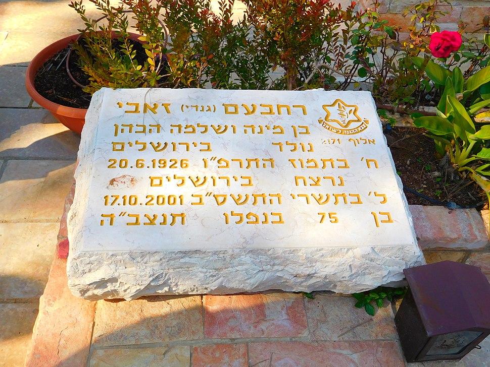 Rehavam Ze'evi's grave
