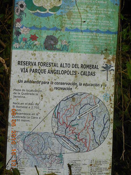 File:Reserva Federal Alto del Romeral Via Parque Angelopolis - Caldas.jpg