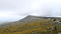 Ribeira Monte da Curotinha 2.jpg