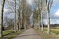 Rietdijk P1350029.jpg