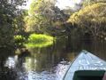 Rio negro - amazones.png