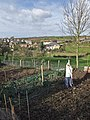 Risby Hill allotment, Little Weighton - geograph.org.uk - 674250.jpg