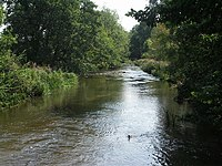 River Frome at Frampton - geograph.org.uk - 534063.jpg