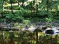 River Spean, Roybridge - geograph.org.uk - 1234766.jpg