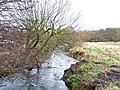 River Stour looking towards Wilden - geograph.org.uk - 651578.jpg