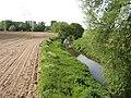 River Tern. - geograph.org.uk - 439707.jpg