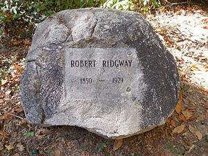 Robert Ridgway - Grave marker of Robert Ridgway, at Bird Haven.
