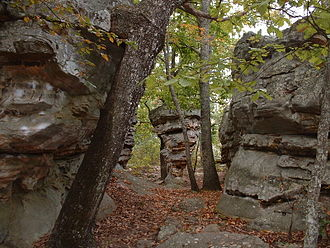 Rocktown (Georgia) - These formations are typical of those found in and around the Rocktown area.