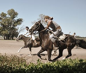 The Amazing Race 16 - Tasks featured on this leg related to gauchos and other aspects of Argentine equestrianism.
