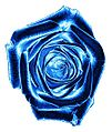 Rose blue002.jpg