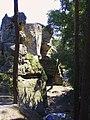 Rotstejn skalni suk od sz.jpg
