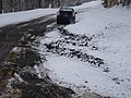 Rough road snowplow and frost damage, New York State Route 421, Adirondacks.jpg
