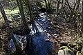 Ruisseau de Clamouze Égliseneuve-d'Entraigues n02.jpg