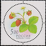 Russia stamp 2003 № 884.jpg