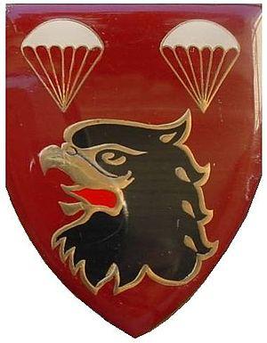 2 Parachute Battalion - Image: SANDF 2 Para