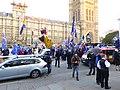 SODEM Westminster 0453c.jpg