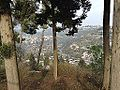 Safed view 02.JPG