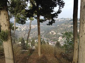 Northern District (Israel) - Safed
