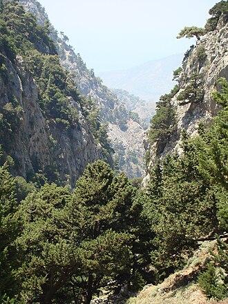 Agia Eirini Gorge - Agia Eirini Gorge