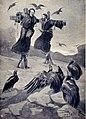 Salgari - I figli dell'aria (page 311 crop).jpg