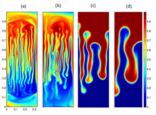Double diffusive convection