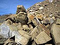 Sandstone (Vinton Member, Logan Formation, Lower Mississippian; Hanover Pit, Licking County, Ohio, USA) 3 (46617977955).jpg