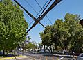Santiago de Chile-CTJ-IMG 5341.jpg