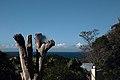 Scottburgh, South Africa - panoramio.jpg
