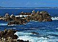 Sea View - panoramio (1).jpg