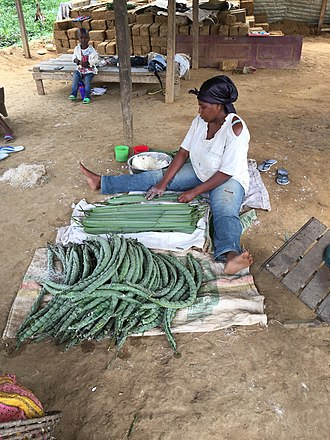 Centre Region (Cameroon) - Woman selling bobolo (manioc) near Mbalmayo.