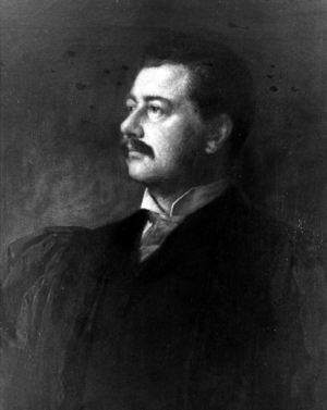 Seth Low - Eastman Johnson's portrait of Seth Low, c. 1890