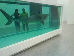 Shark83