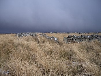 English: Sheepfold. An abandoned sheepfold aga...
