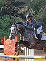Show Jumping Competition 2014.JPG