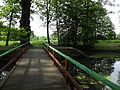 Siary zespół pałacowo-parkowy park nr A-201 (33).JPG