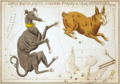 Sidney Hall - Urania's Mirror - Canis Major, Lepus, Columba Noachi & Cela Sculptoris.png