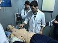 Simulación Cardiovascular 2.jpg