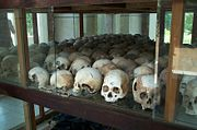 Skulls from the killing fields