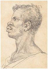 Slaves and negroes at Rio and Bahia