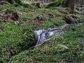 Small stream in the Taunus 5.jpg