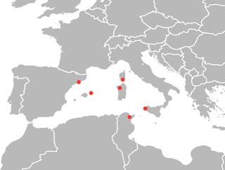 <i>Schmidtea mediterranea</i> Species of worm