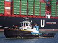 Smit Panther (tugboat, 2009) IMO 9434814 Callsign C6XV7 Amazonehaven Port of Rotterdam pic2.JPG