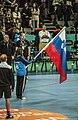 Spain vs Slovenia at 2013 World Handball Championship (6).jpg